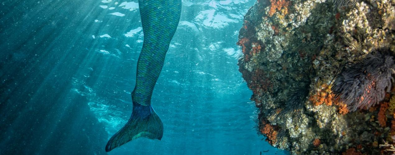 Zeemeermin staart aantrekken
